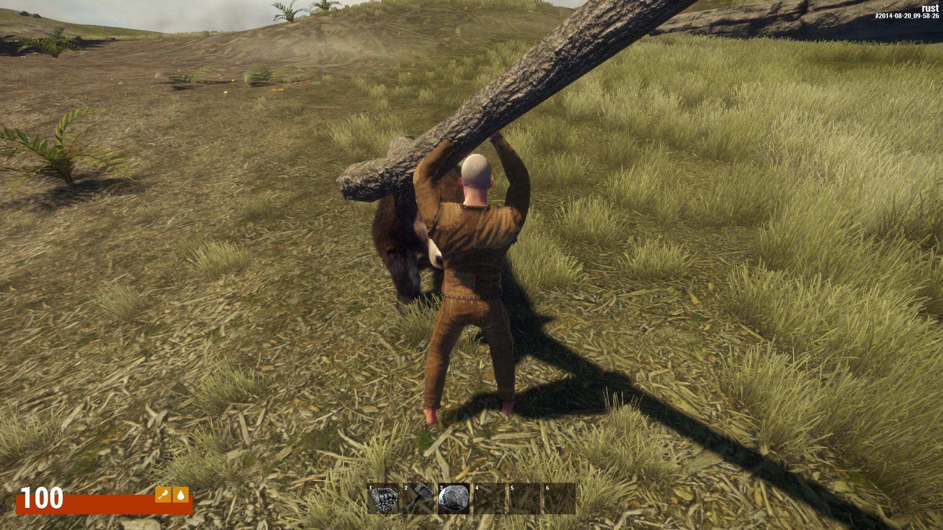 Чтобы убить медведя, нужно нечто большее, чем просто камень