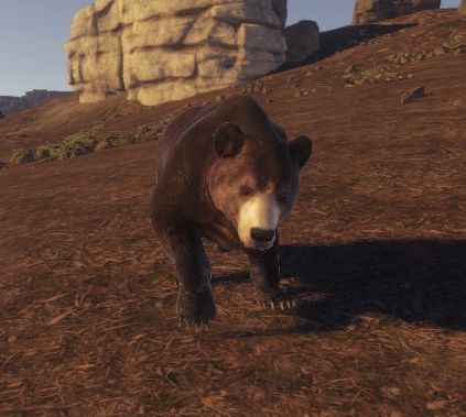 Медвель (Bear)