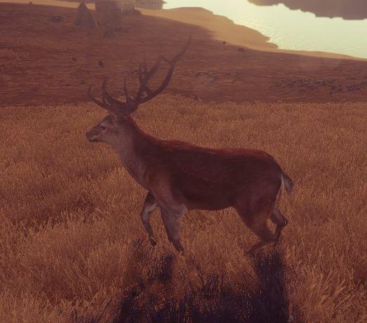 Олень (Deer)