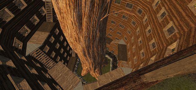 Дом вокруг дерева 3