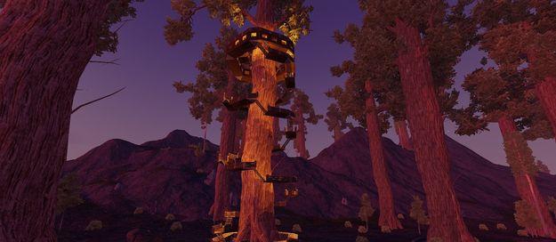Дом вокруг дерева 5