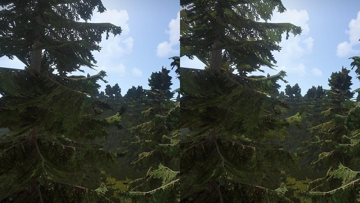 leaf_translucency