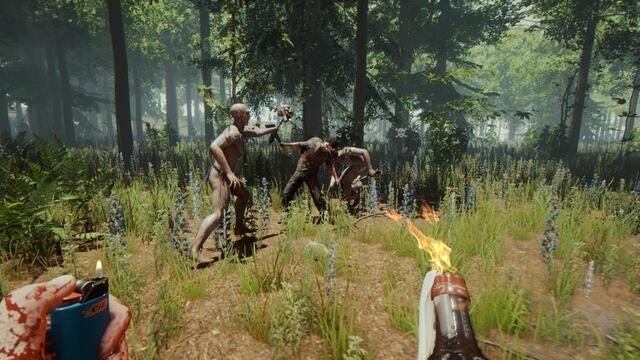 the forest игра как раст